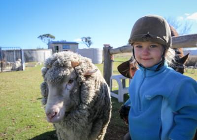 Mudgee farmstay pics-4317
