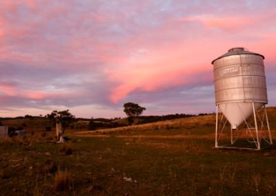 Mudgee farmstay pics-4652