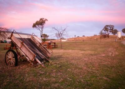 Mudgee farmstay pics-4655